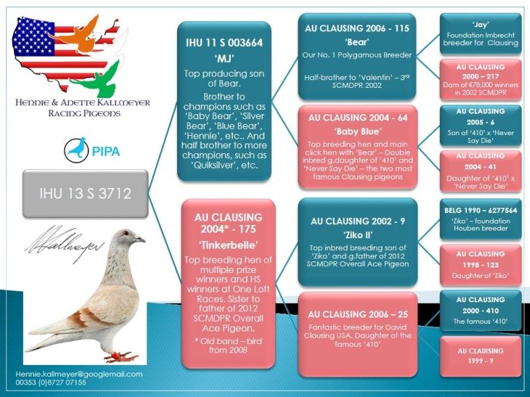 IHU13-S3712_ped