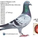 Pinter-Al-Capone_3819