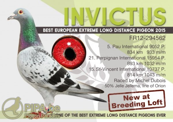 invictus_foto_fr12-294562_2